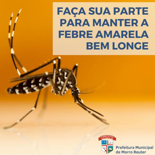 Aedes aegypti pode transmitir a febre amarela urbana