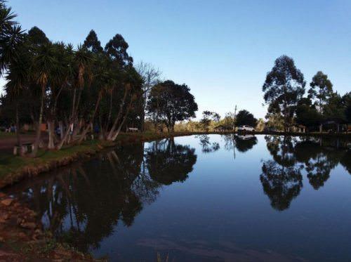 Pesque e Pague Wiest